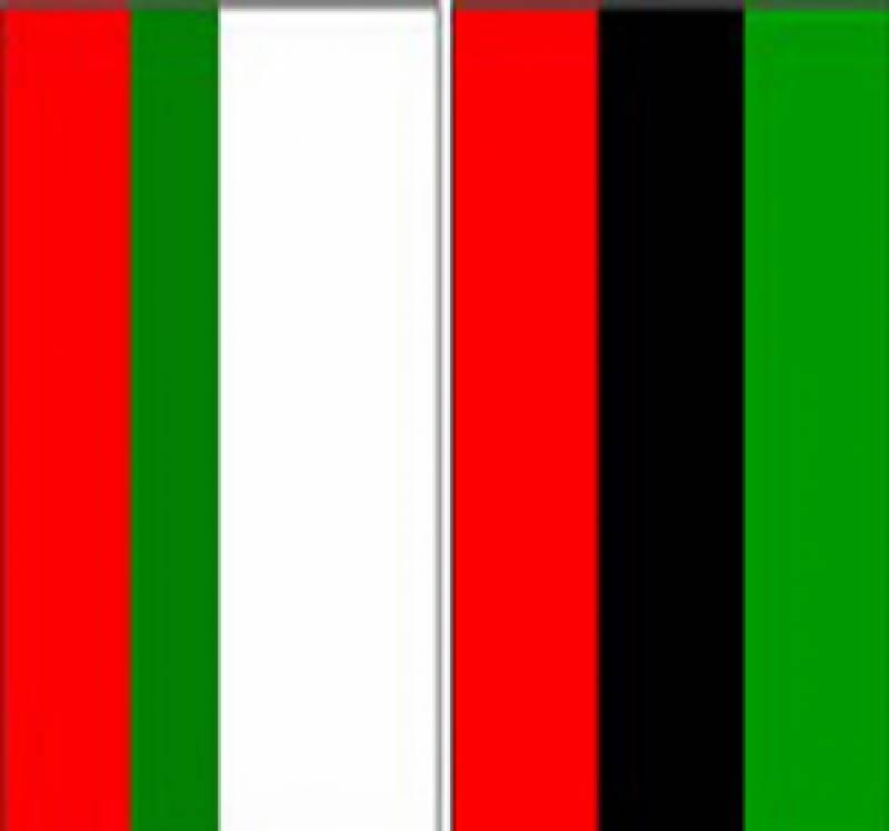 سندھ میں نئے بلدیاتی نظام کے حوالے سے پیپلز پارٹی اور متحدہ قومی موومنٹ میں اتفاق رائے نہیں ہوسکا