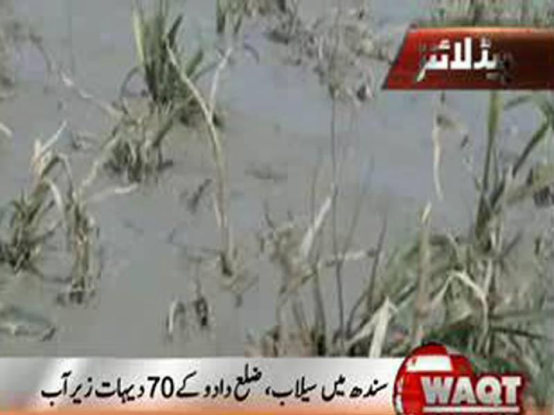 سندھ کے ضلع دادو میں سیلاب نے تباہی مچا دی،ستر دیہات زیرآب آنے سے ہزاروں ایکڑ پر کھڑی فصل تباہ، ہزاروں افراد پھنس گئے۔