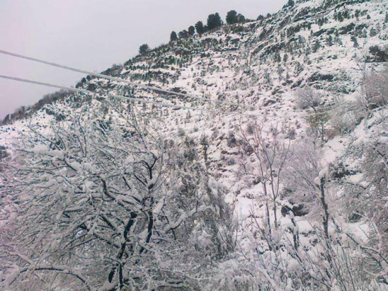 ملک کے بیشتر علاقوں میں موسم سرد  اورخشک رہےگا،تاہم اسلام آباد،راولپنڈی،گوجرانوالہ،پشاور،مالاکنڈ اور ہزارہ ڈویژن میں بارش اورگلگت بلتستان میں ہلکی برف باری کا امکان ہے