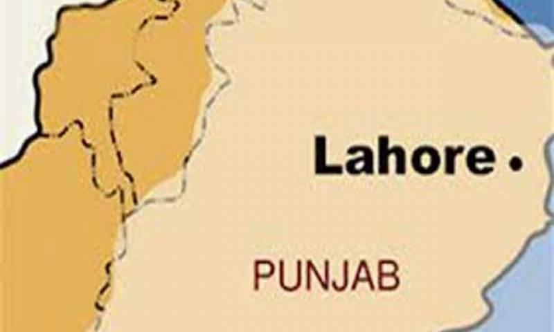 لاہور شاہدرہ کے علاقے میں بجلی کی تار گرنے سے آٹھ مویشی کرنٹ لگنے سے ہلاک ہوگئے