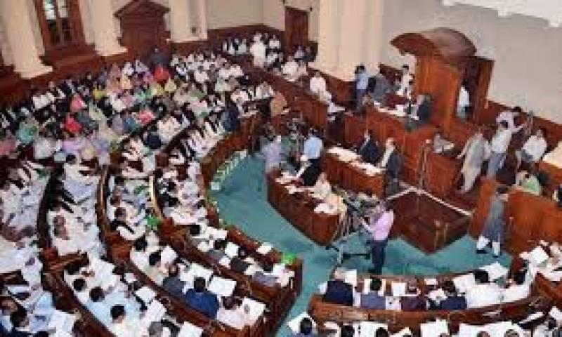 پنجاب اسمبلی میں پاس ہونے والے وومن پروٹیکشن بل اب قانون بن چکا ہے