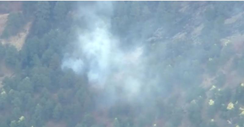 امریکی ریاست کولوراڈو کے جنگلات میں لگی آگ بے قابو ہو گئی