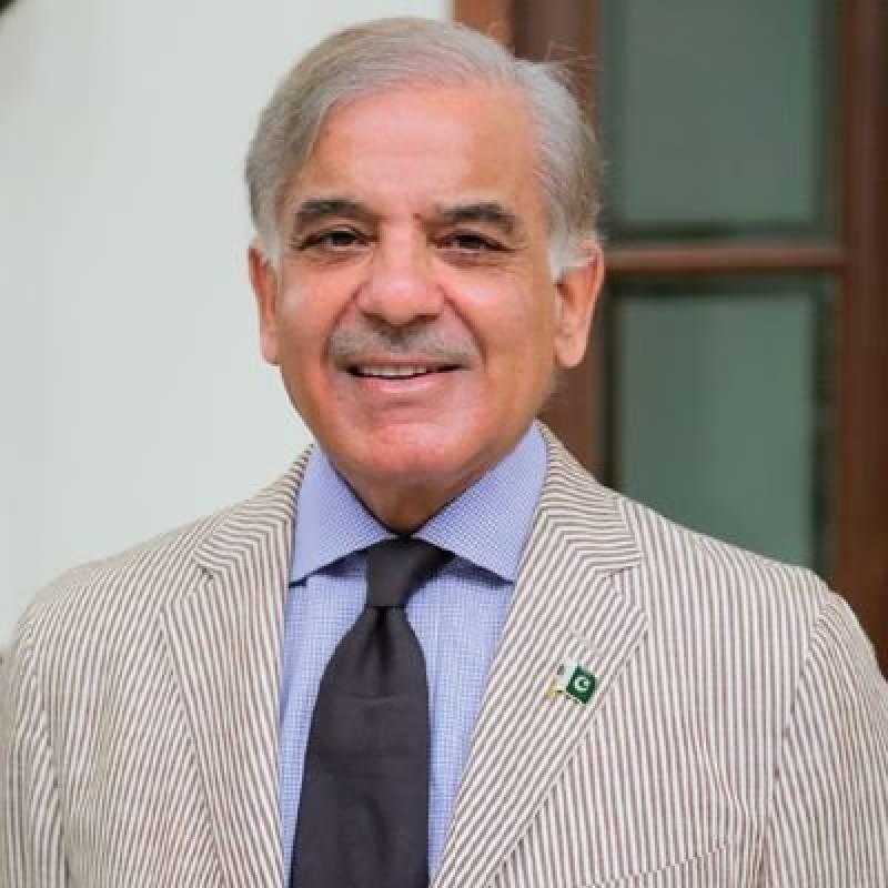 وزیراعلیٰ پنجاب شہباز شریف دورہ لندن مکمل کر کے واپس لاہور پہنچے