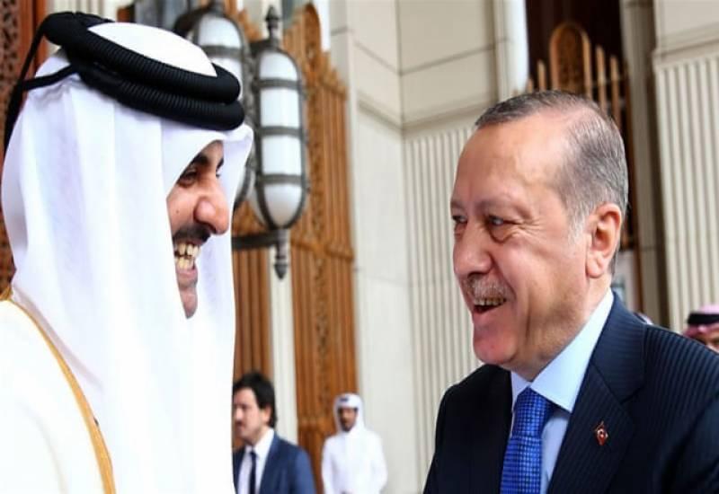 امیر قطر کا قطری بحران کے بعد یہ پہلا غیر ملکی دورہ ہے۔