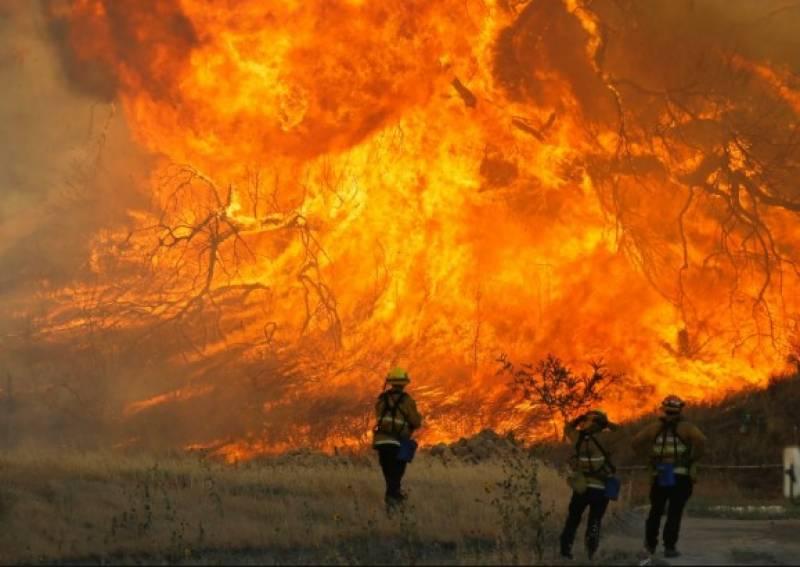 امریکی ریاست کیلی فورنیا میں جنگلاتی آگ نے ہر سو تباہی مچادی, سترہ افراد ہلاک دو ہزار عمارتیں راکھ کا ڈھیر بن گئی