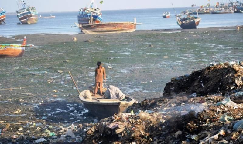 نیشنل بینک آف پاکستان کی جانب سے کراچی میں سی ویو کے ساحل کی قدرتی دلکشی کو بحال کرنے کیلئے ایک روزہ صفائی مہم کا انعقاد کیا گیا۔