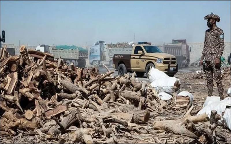 سعودی عرب میں ماحولیاتی تحفظ کے لیے نئے قوانین نافذ