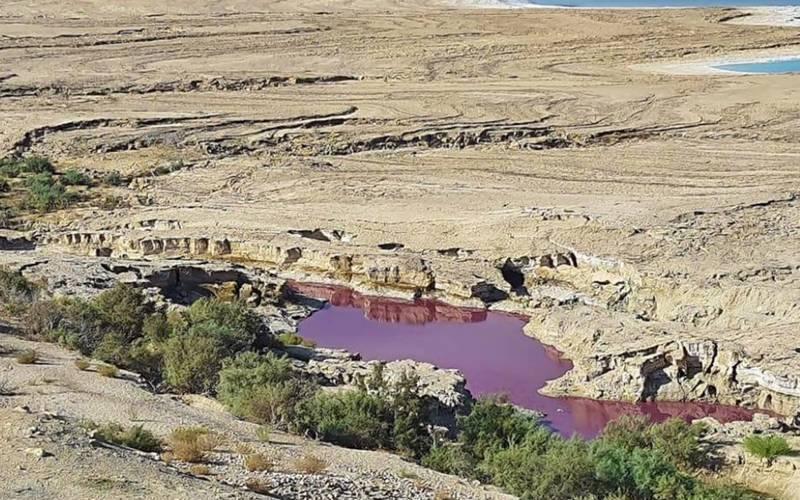 اردن: بحر مردار میں انوکھا سرخ جوہڑ نمودار ہوگیا۔