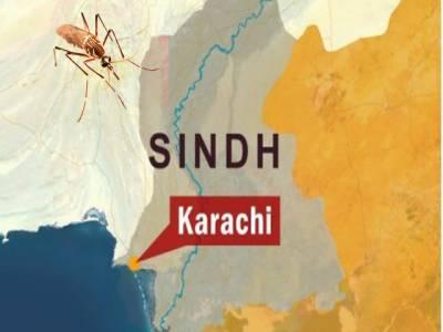 کراچی میں ڈینگی کے خاتمے کے لیے اسپرے مہم کا آغاز کردیا گیا