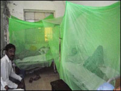 پنجاب میں ڈینگی بخارمیں مبتلا دوخواتین سمیت پانچ افراددم توڑگئےجس کے بعد ہلاک ہونے والوں کی تعدادپینتیس ہوگئی ہے۔
