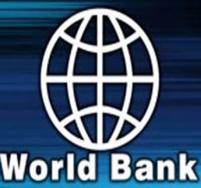 عالمی بینک نے پاکستانی معیشت کوہدف تنقید بناتے ہوئے کہا ہے کہ ملک میں فی کس آمدنی میں کمی اور بیروزگاری میں اضافہ ہورہا ہے۔