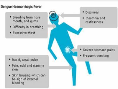 لاہور میں ڈینگی وائرس کے باعث ہلاک ہونے والوں کی تعداد تینتالیس ہوگئی ہے۔