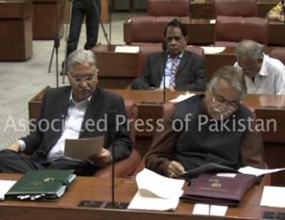 Islamabad Raza Rubani Duble Standerd Of PM & PPP Leader ship