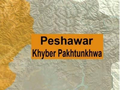 پشاور پولیس نے وزیراعظم کی آمد سے قبل اسلحہ اور بارود سے بھری گاڑی پکڑ کر دو ملزمان کو گرفتار کرلیا ہے۔