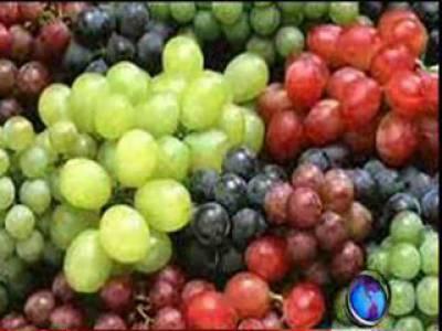 ماہرین صحت کا کہنا ہے کہ انگورکا استعمال قوت مدافعت پیدا کرکے بیماریوں سے محفوظ رکھتا ہے۔