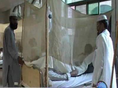 قاتل ڈینگی نے لاہورمیں مزید چار افراد کو ابدی نیند سلادیا، ڈینگی کے پیچیدہ مریضوں کو ٹیچنگ ہسپتال منتقل کردیا گیا ۔