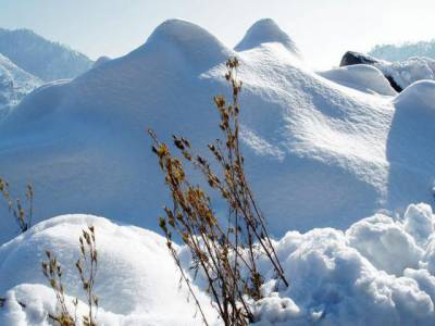 محکمہ موسمیات کےمطابق کل سے ملک میں بارش اور برفباری کا نیا سلسلہ شروع ہونے کا امکان ہے۔