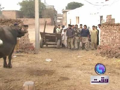 Manazar Nama (Khoji) Waqtnews Tv Program