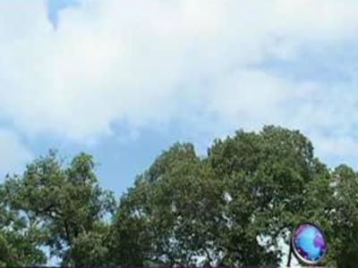 ملک کے بيشترعلاقوں ميں آج موسم خشک اورگرم رہے گا تاہم کشميراوراس کے ملحقہ پہاڑی علاقوں ميں چند ايک مقامات پربارش کا امکان ہے۔