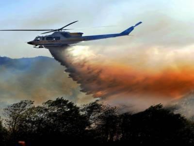 لاس اینجلس : جنگلات میں آگ بھڑک اٹھی , فائرفائٹرز ہیلی کاپٹرز اور ہوائی جہازکی مددسےآگ بجھانے میں مصروف