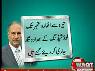 پنجاب سمیت سارے صوبوں میں یکساں لوڈشیڈنگ ہو رہی ہے، امتیازی لوڈشیڈنگ کا تصور غلط ہے۔ وفاقی وزیر پانی وبجلی چوہدری احمد مختار