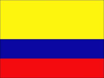 کولمبیا میں ہیلووین پریڈ کےقریب دھماکہ خیزمواد لیجانےوالےدوباغی ہلاک ہوگئے۔