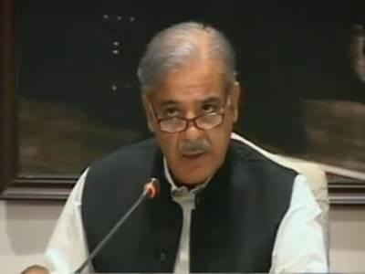 خودروزگار پروگرام: قرضوں کی فراہمی کے عمل کو جلد ایک ادارے کی شکل دی جائے گی. جنوبی پنجاب اور کم ترقی یافتہ علاقوں کے لوگوں کوقرضے فراہم کئیے جائیں گے۔ وزیراعلی پنجاب