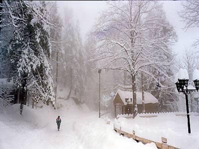 ملک میں کہیں رم جھم توکہیں برفباری نے سردی کی شدت میں اضافہ کردیا، تین سے چار فٹ برف نے جہاں ملکہ کوہسار مری کا حسن دوبالا کیا ہے وہیں راستے بلاک ہونے کی وجہ سے لوگوں کو مشکلات کا بھی سامنا ہے۔