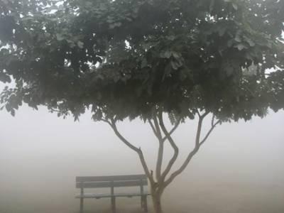 ملک کے بیشتر علاقوں میں موسم سرد اورخشک رہےگا،لاہور،گوجرانوالہ،فیصل آباد،سکھرڈویژن اورپشاورمیں دھند چھائی رہےگی۔