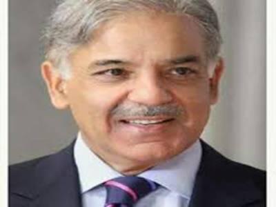 وزیر اعلیٰ پنجاب کی تقریر کے بعد بھوانہ میں سیلاب متاثرین سراپا احتجاج بن گئے گو نواز گو کے نعرے لگائے جبکہ شہباز شریف کی گاڑی روکنے کی کوشش بھی کی گئی