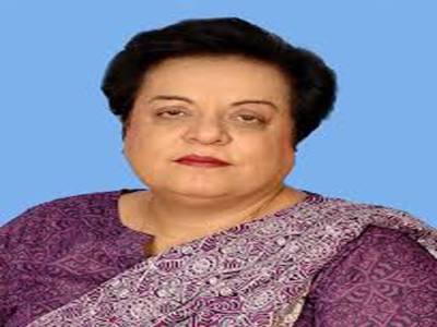 پاکستان تحریک انصاف کی رہنما شیریں مزاری کا کہنا ہے کہ نون لیگ والے لاشیں گراتے ہیں اور پھر سیاست کرتے ہیںن لیگ نےطے شدہ منصوبے کے تحت فیصل آباد میں فائرنگ کروائی،کہتی ہیں ،