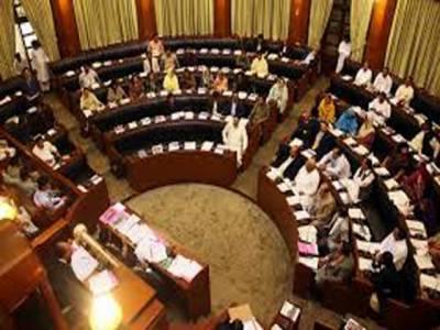 سندھ میں حکمران جماعت پیپلزپارٹی اور اس کی اتحادی ایم کیو ایم نے میدان مار لیا