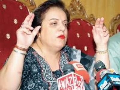جاوید ہاشمی بھول گئے ہیں کہ پارٹی انتخابات میں عمران خان اور شاہ محمود قریشی بلا مقابلہ منتخب ہوئے تھے: شیریں مزاری