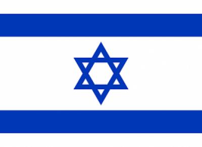 شام میں باغیوں کی بڑھتی کارروائیوں کے بعد اسرائیل بھی میدان جنگ میں کود پڑا
