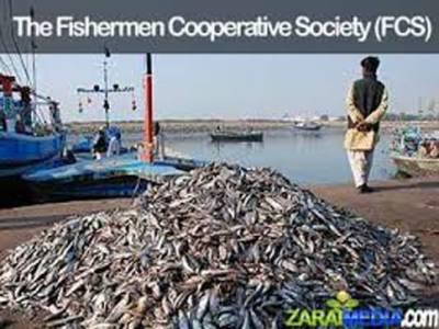 کراچی میں فشرمین کوآپریٹیو سوسائٹی میں بڑے پیمانے کی کرپشن کے مزید ملزمان سامنے آگئے