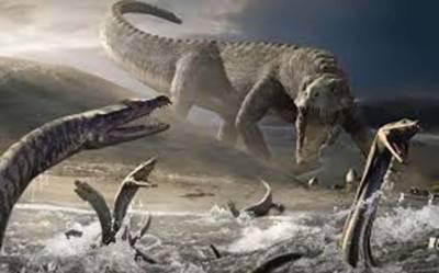 6کروڑ 60لاکھ سال قبل زمین پر شہاب ثاقب گرنے سے ڈائنوسار کی موت کے بعد مچھلیوں کا جدید دور شروع ہوا: نئی تحقیق
