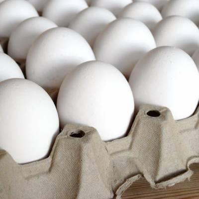 لاہور: ایک ہفتہ کے دوران برائلر گوشت 29 روپے کلو' انڈے 4 روپے درجن مہنگے