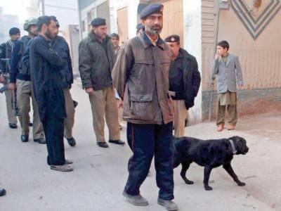 پشاور کے مختلف علاقوں میں پولیس نے سرچ آپریشن کرکے 35 سے زائد مشتبہ افراد کو گرفتار کرلیا