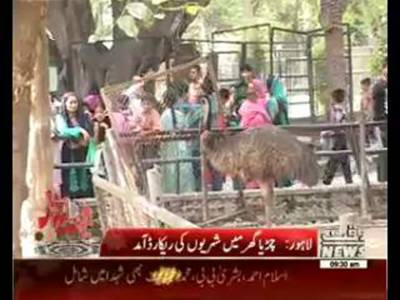 Over 2 Lac people visited Lahore zoo during Eid holidays: Zoo Officials