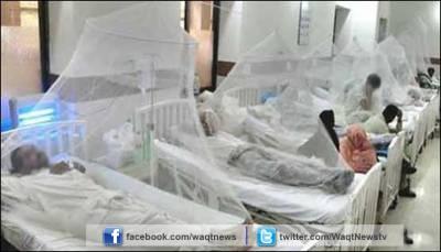 محکمہ صحت سندھ کے دعوؤں کے باوجود کراچی میں ڈینگی وائرس کے مریضوں میں دن با دن اضافہ ہورہا