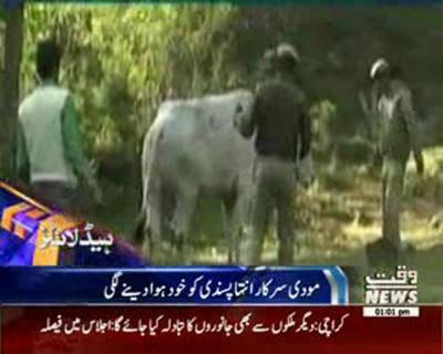 Waqtnews Headlines 01:00 PM 19 October 2015