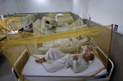 راولپنڈی میں ڈینگی مچھر کے ڈنگ جاری