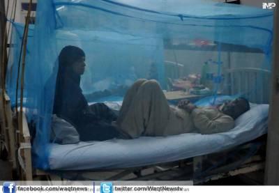 راولپنڈی میں شہریوں پر ڈینگی مچھر کا واری جاری ہے