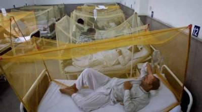 محکمہ صحت سندھ کے دعوؤں کے باوجود کراچی میں ڈینگی کے نئے کیسزسامنے آنے لگے