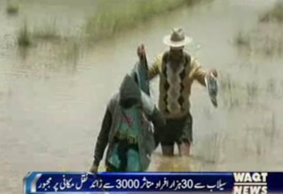 شمال مغربی پیرومیں طوفانی بارشوںٍ کےبعدبد ترین سیلاب سےمعمولات زندگی درہم برہم ہوکرہ گئے