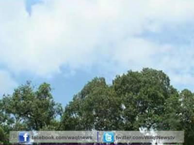 محکمہ موسمیات نے اگلے5سے6روزکےدوران گندم کی کٹائی کے بیشترعلاقوں میں موسم گرم اور خشک رہنے کی پیشگوئی کردی