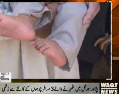 پشاورمیں بلی کی جسامت کےخونخوارRatsنےشہریوں کاجیناحرام کردیا۔ہوٹل میں مقیم3مسافروں کوچوہوں نےکاٹ لیا
