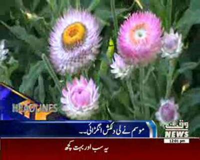 Waqtnews Headlines 12:00 PM 21 June 2016