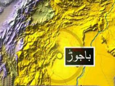 باجوڑ ایجنسی میں دھماکہ،2 شدت پسند ہلاک