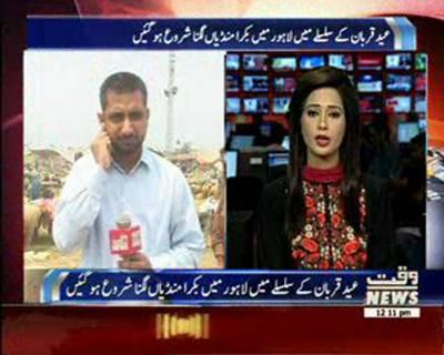 لاہور میں عید قربان کے لئے سات مقامات پر مویشی منڈیاں قائم ،